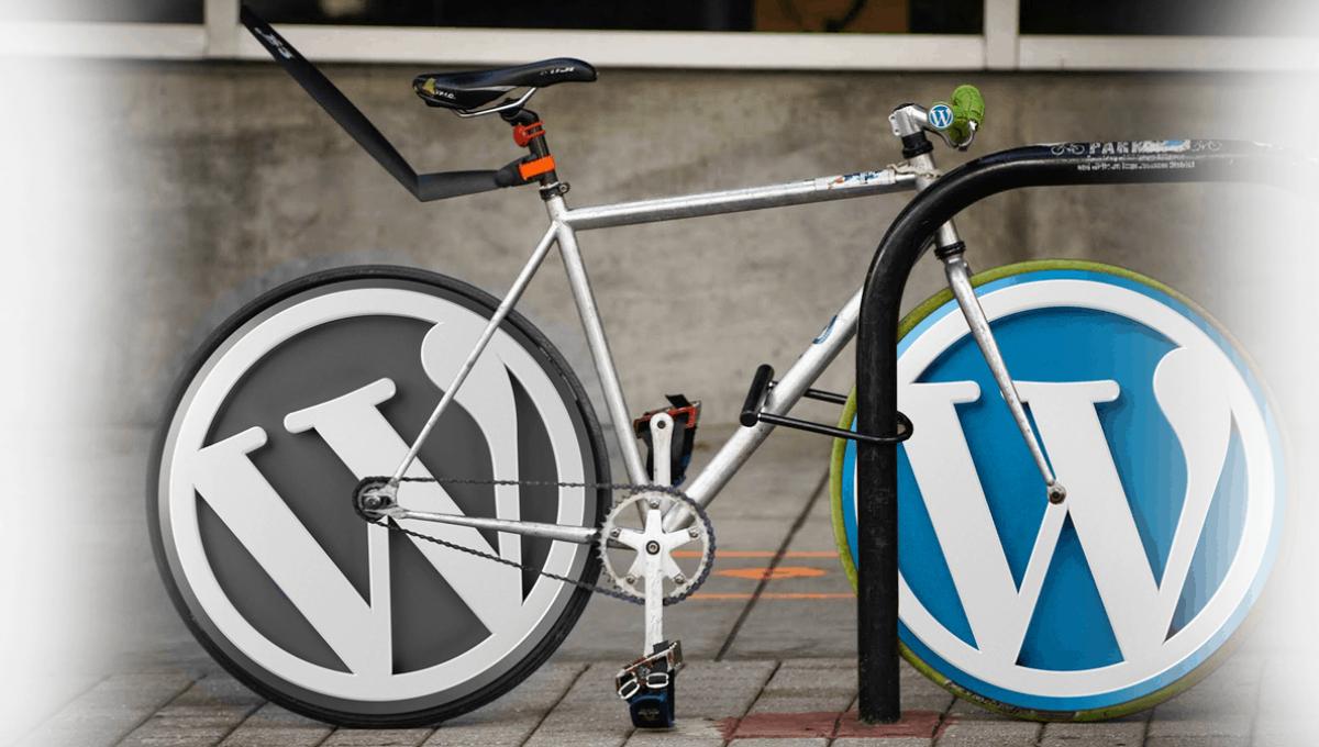 Wordpress.org VS WordPress.com – מה טוב יותר?